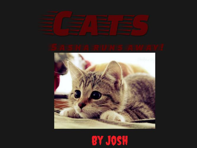 Josh's Book