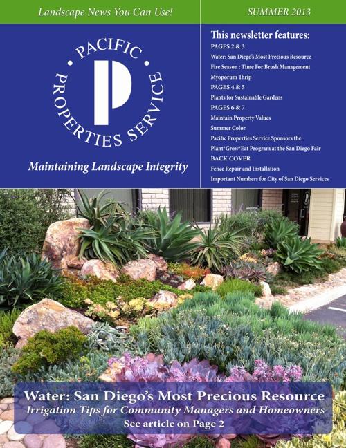 PPS Summer Newsletter 2013