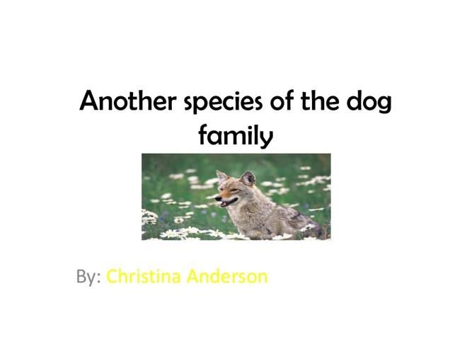 Christina's dog