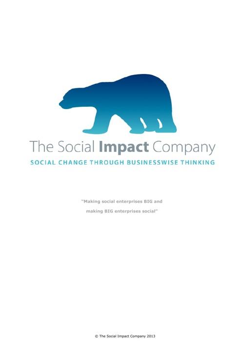 The Social Impact Company 2013