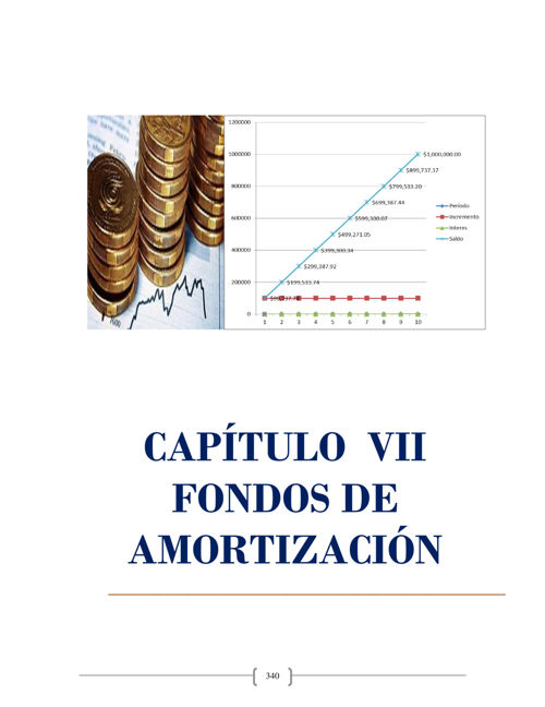 Fondo Amortizacion