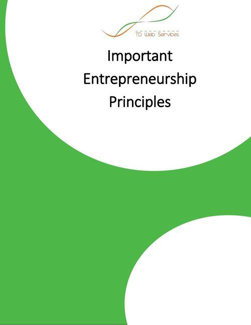 Important Entrepreneurship Principles | TD Web Services