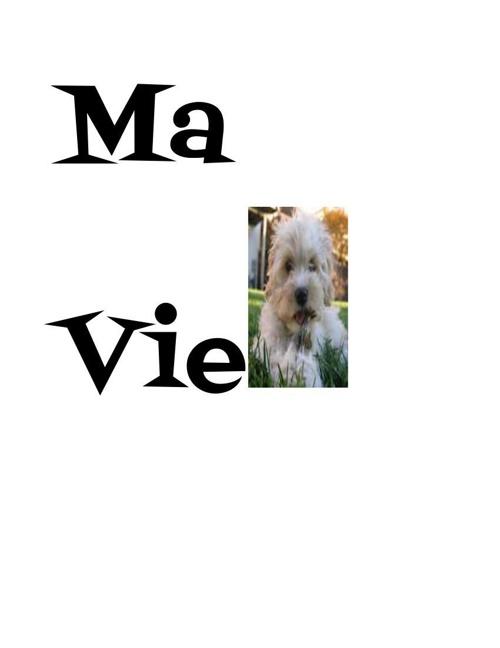 Copy of Ma vie