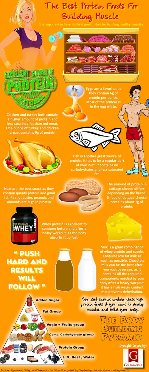 Protein Foods for Building Muscle