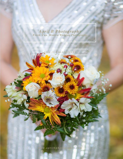 2015 ABP Wedding Guide