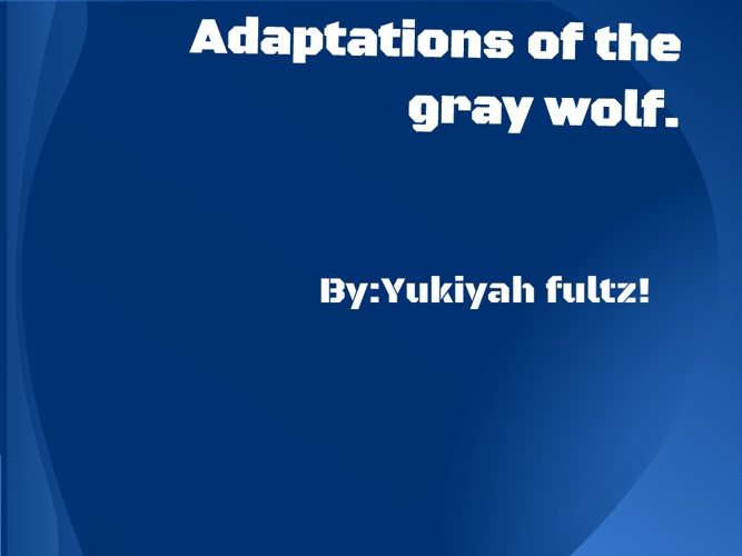 Adaptations of the gray wolf by Yukiyah Fultz