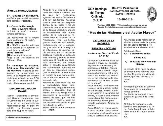 Boletín XXIX Domingo del Tiempo Ordinario