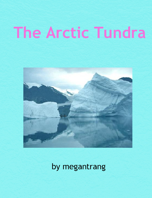 Arctic Tundra by Megan