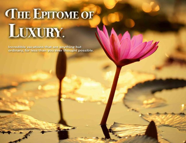 Luxury Catalog