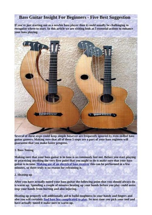 Bass Guitar Insight For Beginners - Five Best Suggestion