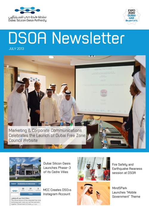 DSOA Newsletter July 2013