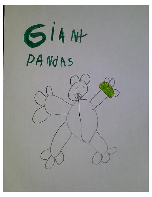 Giant Pandas Class Book