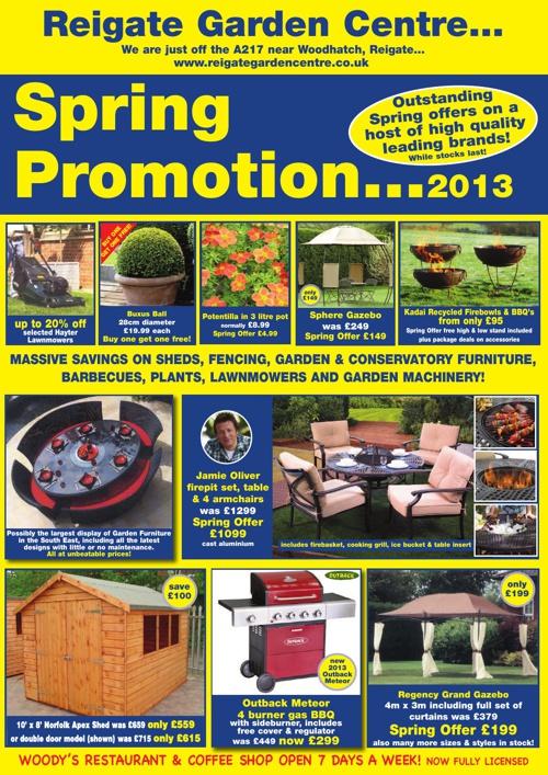 Spring Promotion 2013