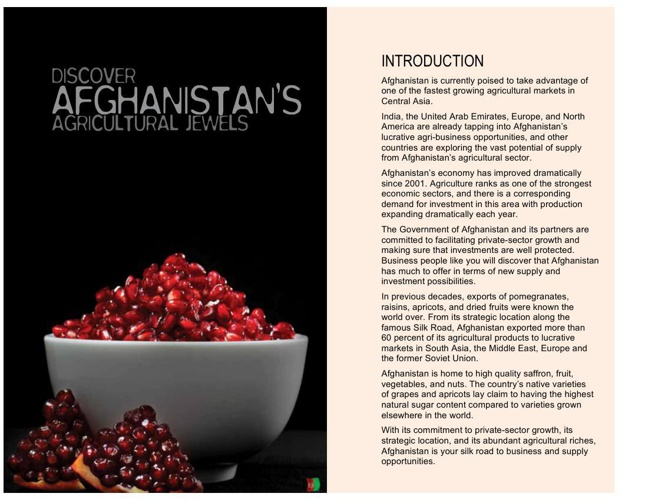 Jewels of Afghanistan