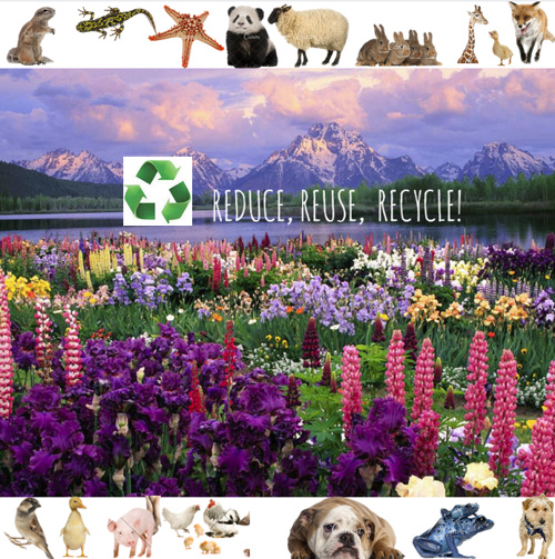reuse, reduce, recycle!