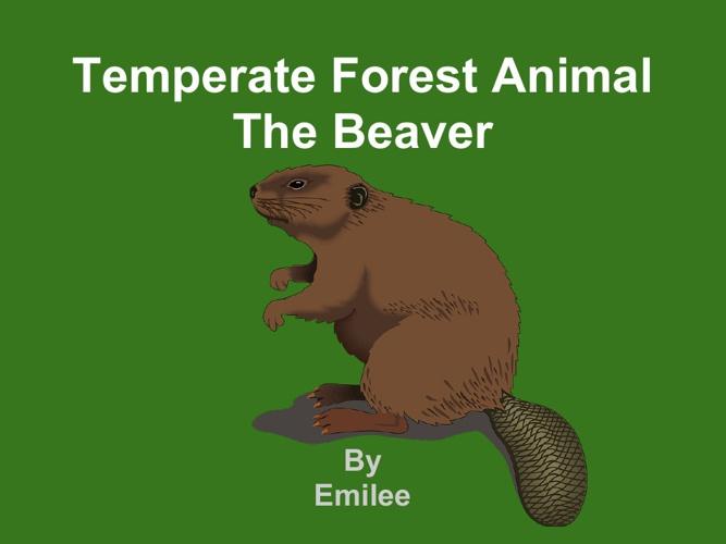 Emilee  beaver