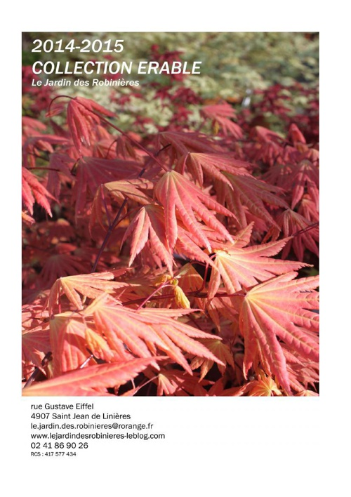 Catalogue des variétés : Erable japonais - Acer