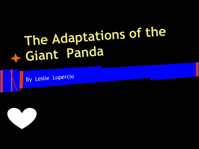 The Adaptations of the Giant Panda
