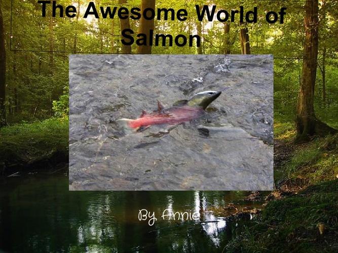 The Wonderful Life of Salmon