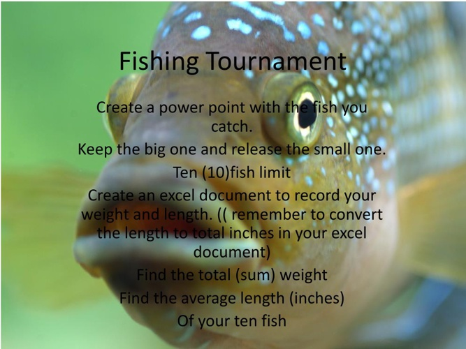 Fishing Tournament example