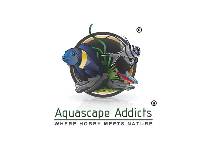 Aquascape Addicts Portfolio Flip Book