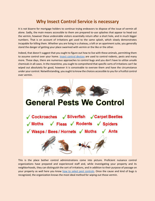 Why Insect Control Service is necessary