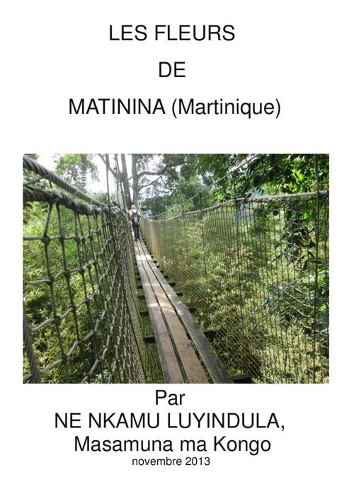 LES FLEURS DE MATININA (MARTINIQUE)