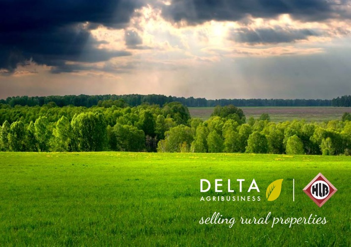 "Delta Rural Property ""Prospectus"""
