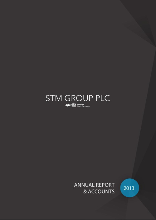 STM Group Annual Report 2013