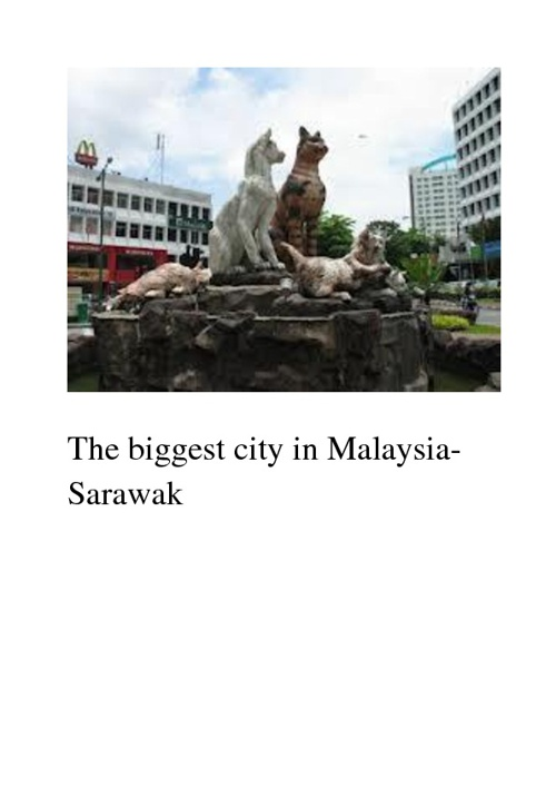 The part of Malaysia-Sarawak