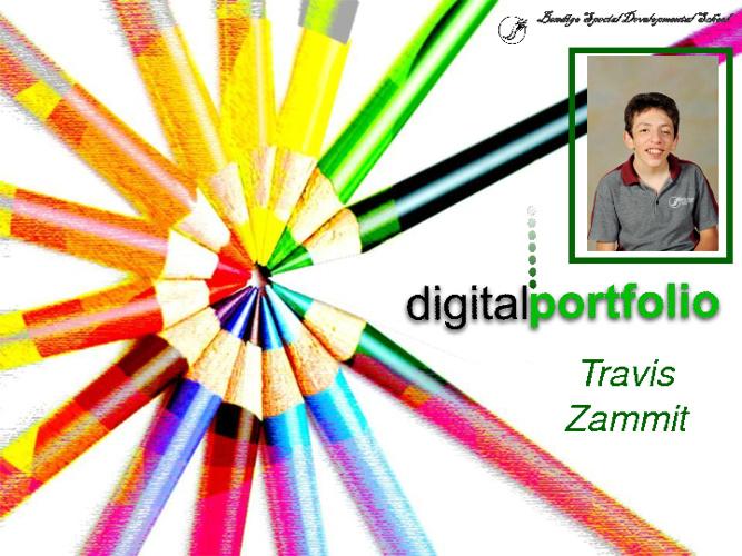 Travis's Portfolio 2012