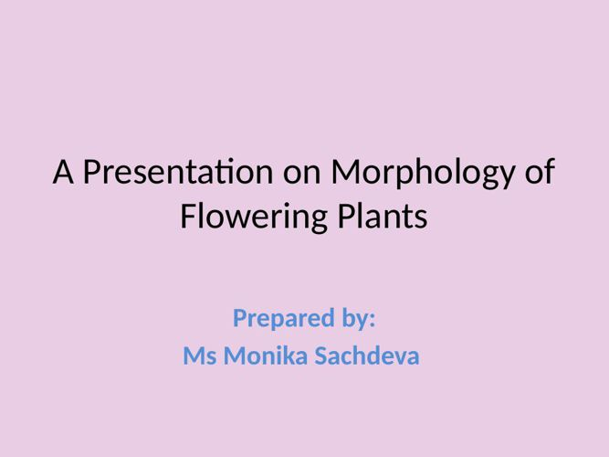 A Zoom into Morphology of Flowering Plants