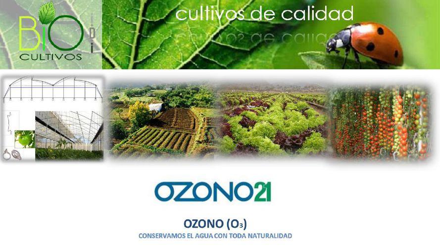 OZONO BIOCULTIVOS