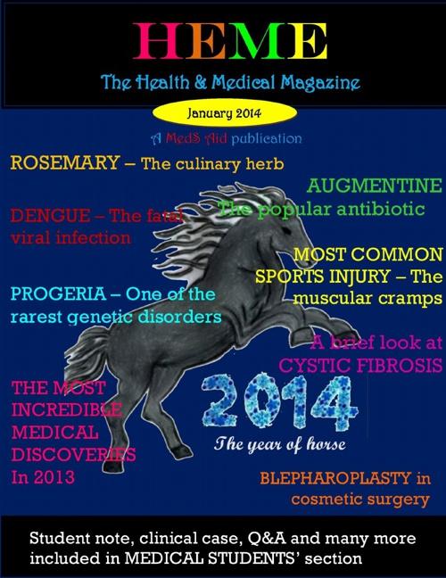 HeMe Magazine - January 2014 issue