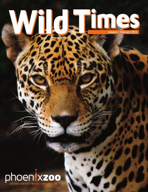 Wild Times January / February  2016