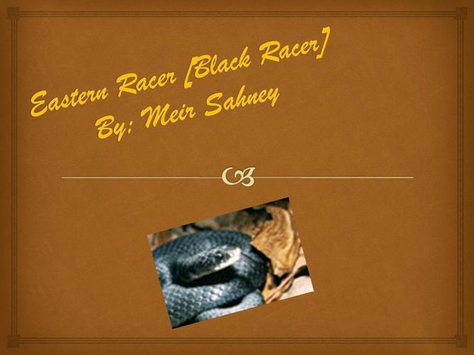 Meir Eastern Racer