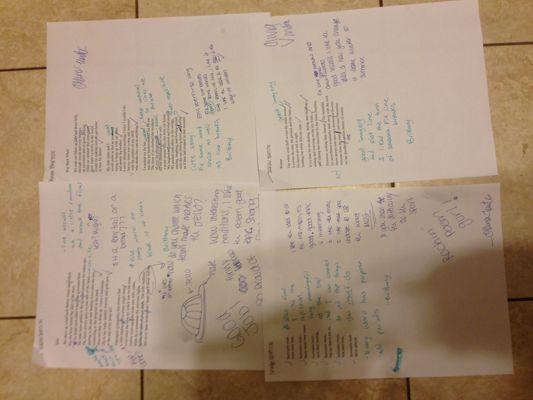 Free Verse Poem Peer Edits