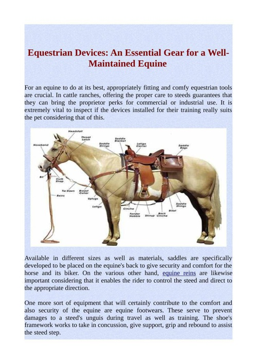 Equestrian Devices: An Essential Gear for a Well-Maintained Equi