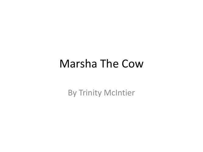 Marsha The Cow