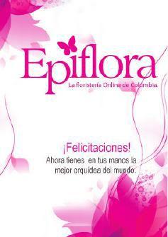 Manual de cuidados Epiflora