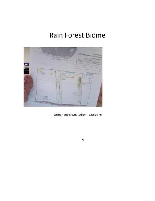 Cassidy Rain Forest