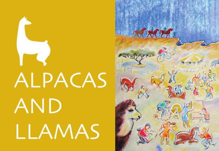 The Ramon Crater - Alpacas and Llamas