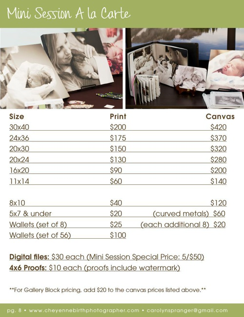 Mini Session Product Prices