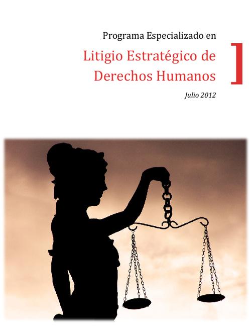 Brochure Programa Especializado en Litigio Estrategico DDHH