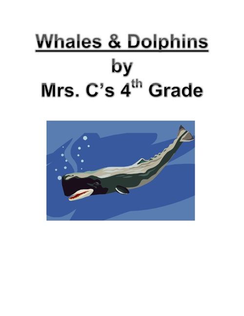 Whales & Dolphins