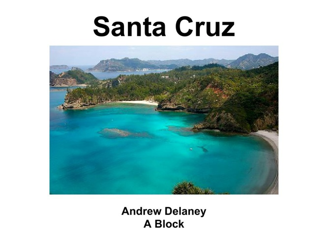 Copy of Andrew Santa Cruz