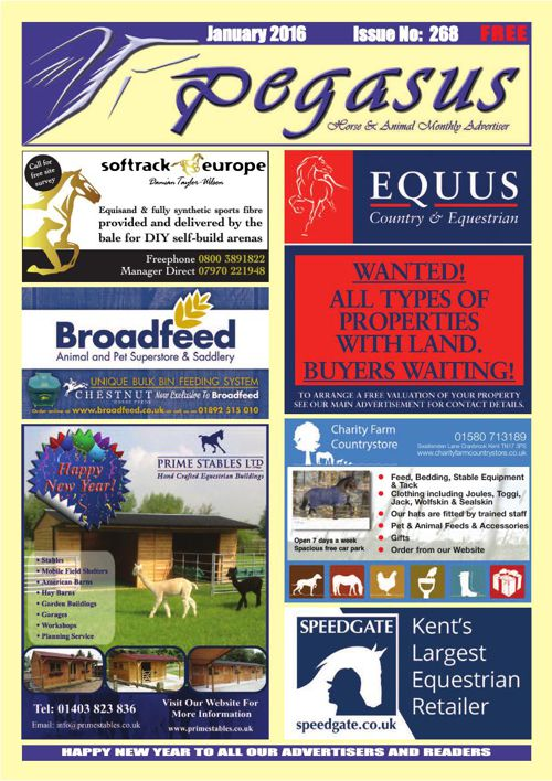 Pegasus Magazine January 2016