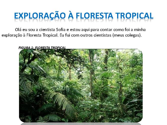 Exploração à floresta tropical
