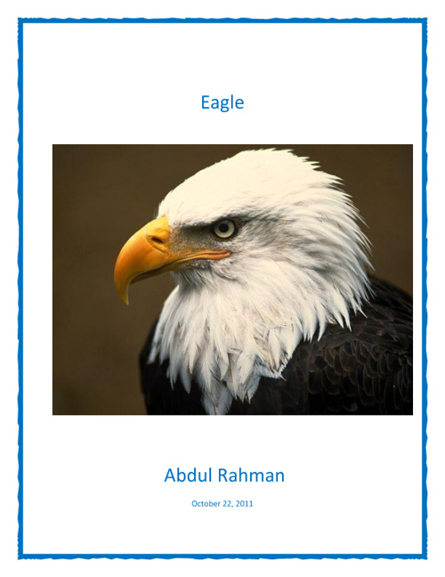 Eagles Template