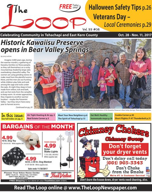 The Loop Newspaper - Vol 33 No 08